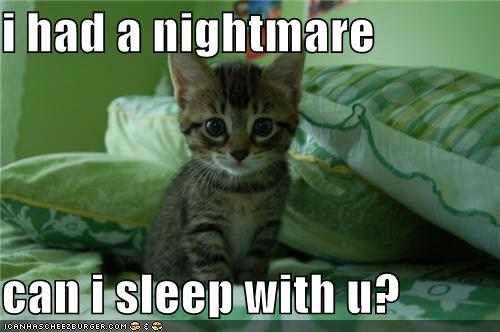 funny-pictures-kitten-had-a-nightmare