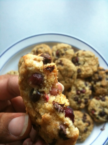 chocolate pomegranate oatmeal cookies