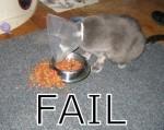 Failure. Tasty, tastyfailure.