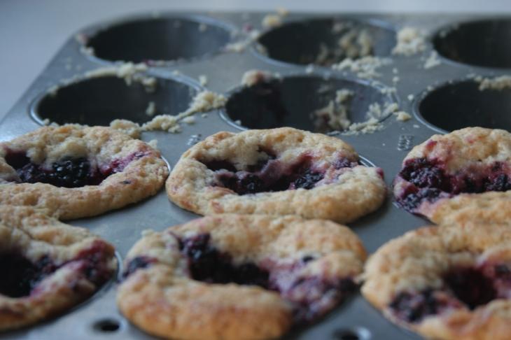 blackberries in muffins