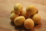sugar apricots