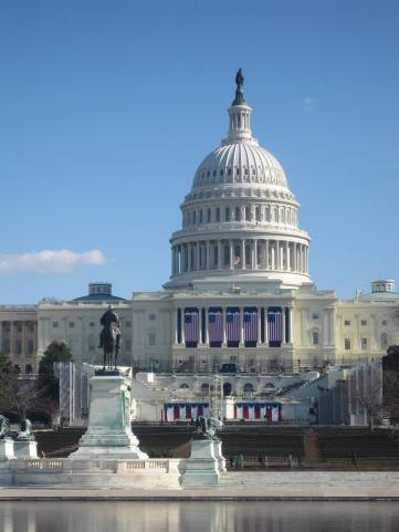The Capitol all decked for the Inauguration